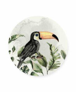 muurcirkel jungle toucan
